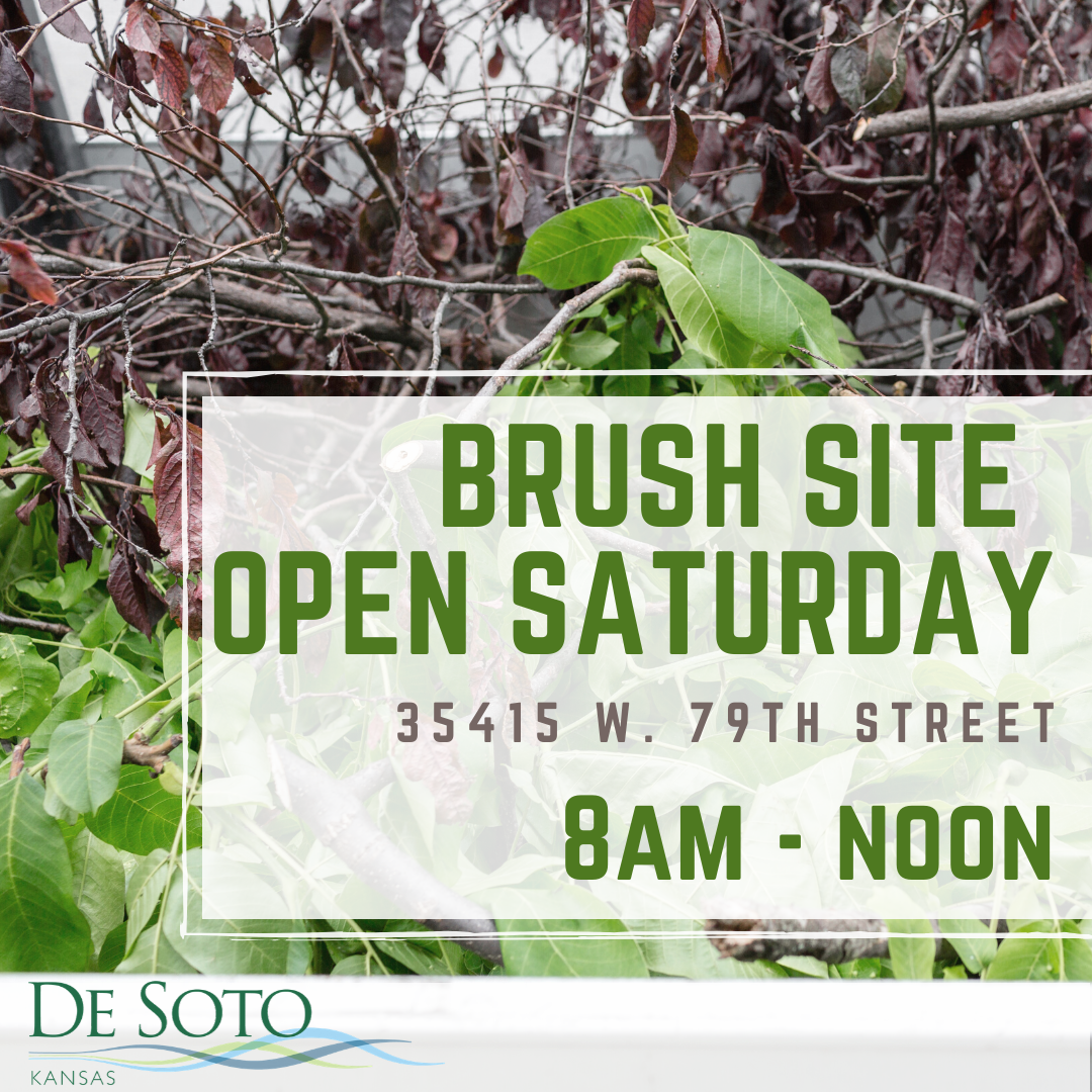 Brush Site Open Saturday